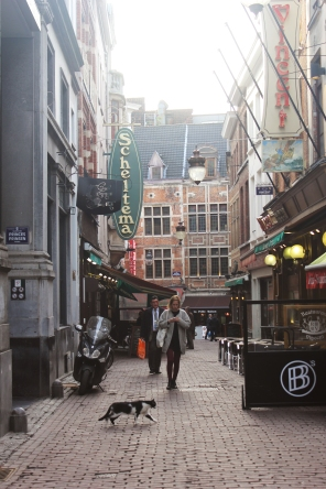 Brussels 8