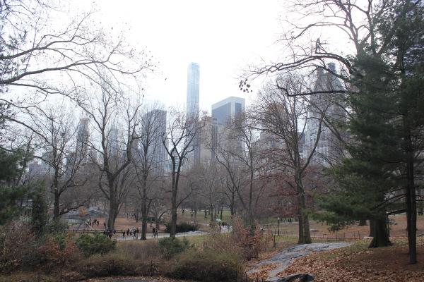 Central Park no snow