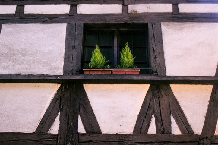 Strasbourg24